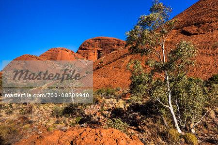 Valley of the Winds, The Olgas (Kata Tjuta), Uluru-Kata Tjuta National Park, Northern Territory, Australia