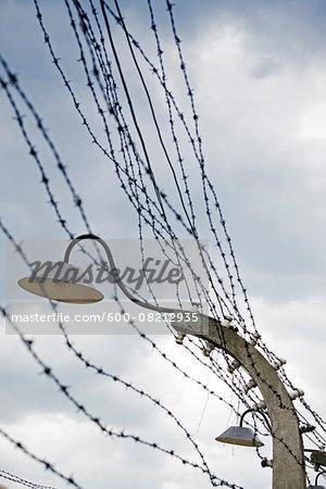 Barbed Wire and Light, Auschwitz, Oswiecim, Poland