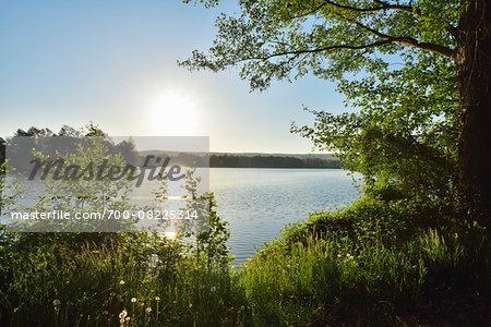 Sunrise on Lake, Niedernberg, Miltenberg-District, Churfranken, Franconia, Bavaria, Germany