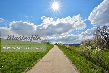 Road through Field with Sun, Bettingen, Wertheim, Main-Tauber-District, Odenwald, Baden-Wurttemberg, Germany