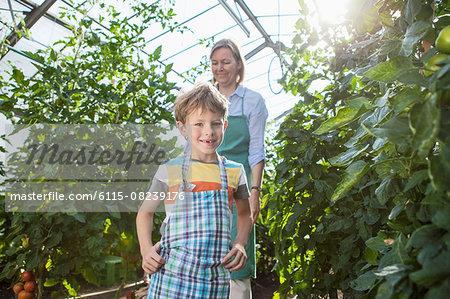 Female gardener and boy harvesting tomatoes in greenhouse