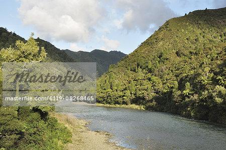 Waioeka River, Waioeka Gorge Scenic Reserve, Bay of Plenty, North Island, New Zealand, Pacific
