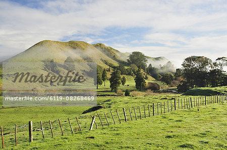 Farmland, near Matawai, Gisborne, North Island, New Zealand, Pacific