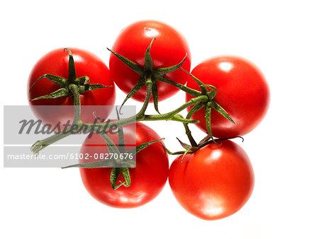 Vine tomatoes on white background