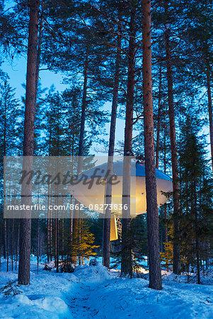 Arctic Circle, Lapland, Scandinavia, Sweden, The Tree Hotel, The UFO room