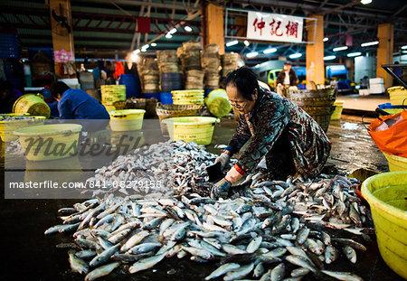 Aberdeen Fish Market, Hong Kong, China, Asia