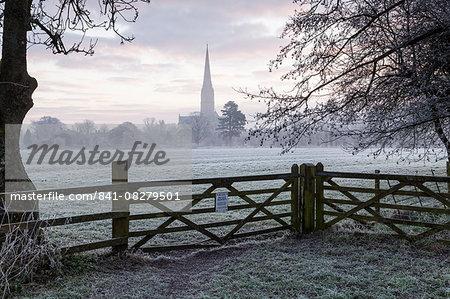 Salisbury Cathedral at dawn in Salisbury, Wiltshire, England, United Kingdom, Europe