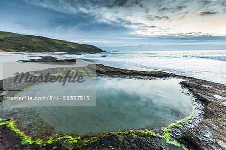 Omapere, Northland Region, North Island, New Zealand, Pacific