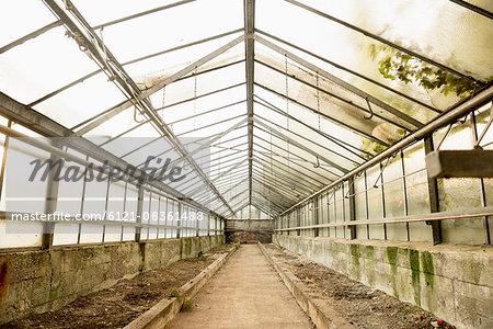 Interior of abandoned greenhouse, Munich, Bavaria, Germany