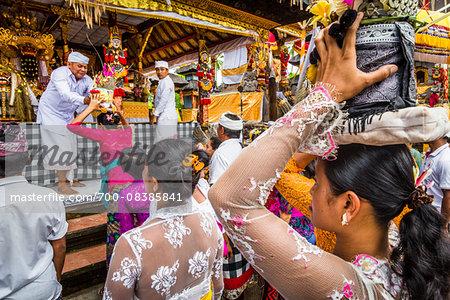People carrying religious offerings, Temple Festival, Petulu, near Ubud, Bali, Indonesia