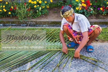 Man weaving palm fronds, Penglipuran, traditional Balinese village, Bangli, Bali, Indonesia
