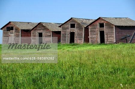 Old barns in Skiff Alberta