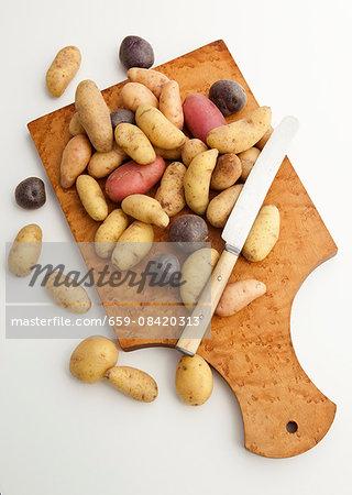 Variety of small potatoes