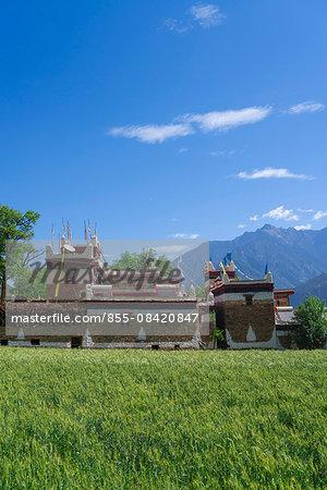 Valley of beauty, Tibetan folk house and wheat field, Jiaju village, Danba (Rongzhag Zong), Garzê Tibetan Autonomous Prefecture, Sichuan Province, PRC