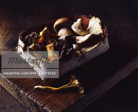 Organic wild mushrooms in tree bark basket on wooden cutting board