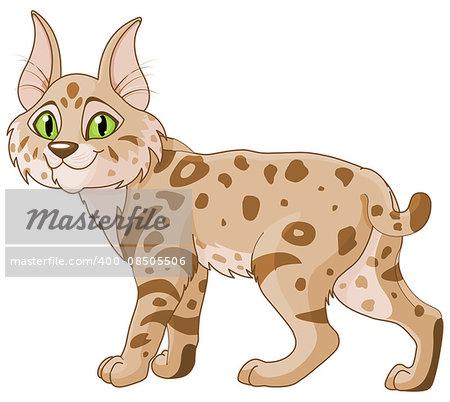 Illustration of cute bobcat