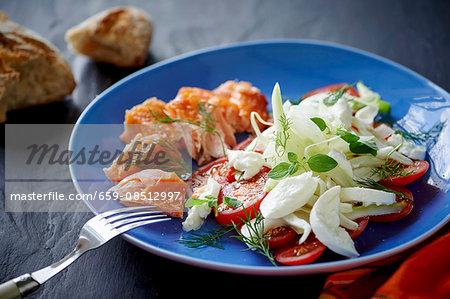 Tomato and fennel salad with mozzarella and salmon