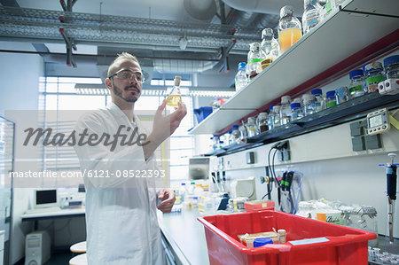 Young scientist working in a pharmacy laboratory, Freiburg im Breisgau, Baden-Württemberg, Germany