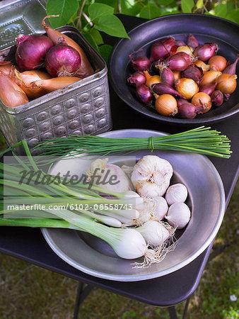Sweden, Stockholm, fresh vegetables