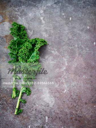 Kale leaves on grey background