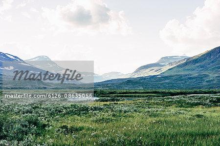 Sweden, Lapland, Green mountain valley