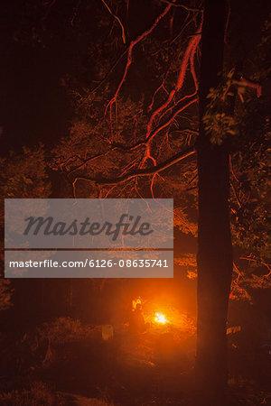 Sweden, Blekinge, Men sitting at camp fire