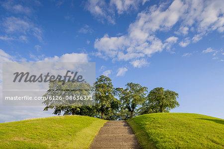 Sweden, Sodermanland, Stockholm, Gamla Enskede, Skogskyrkogarden, Trees on top of hill with steps in front