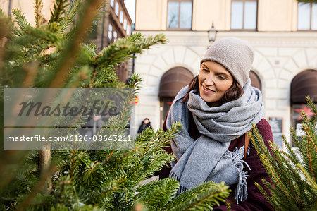 Sweden, Stockholm, Gamla Stan, Woman choosing christmas tree