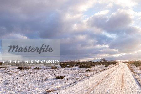 Sweden, Gotland, Alvret, Empty road in winter