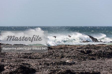 High tide in sea,  Tamarindo