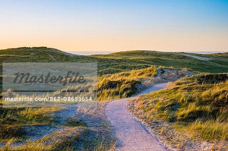 Netherlands, North Holland, Julianadorp. Walking path through the dunes at sunset.
