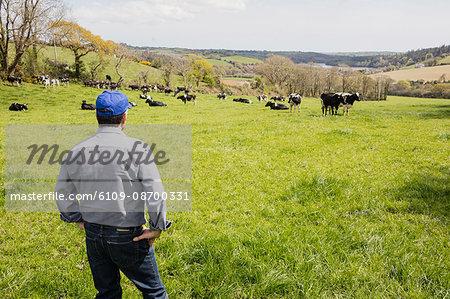 Rear view of farm worker standing on grassy field