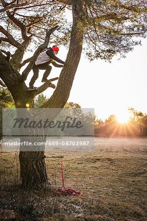 Woman climbing tree, Augsburg, Bavaria, Germany