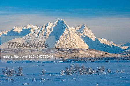 Snowy Winter Landscape with Lyngen Alps, Breivikeidet, Troms, Norway