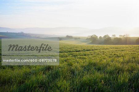 Countryside on Misty Morning at Sunrise, Monchberg, Spessart, Bavaria, Germany