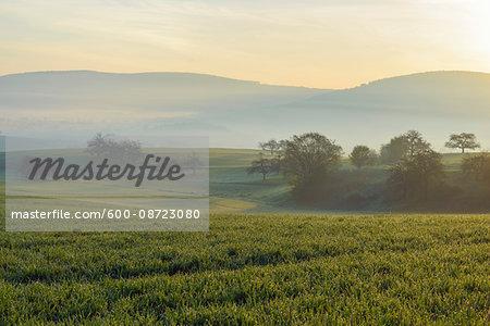 Countryside on Misty Morning, Monchberg, Spessart, Bavaria, Germany