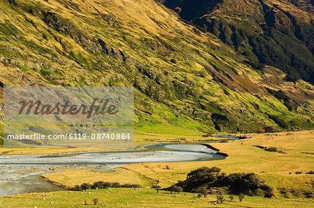 Matukituki Valley, Mount Aspiring National Park, Central Otago, South Island, New Zealand, Pacific
