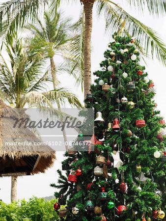 Christmas tree under palms