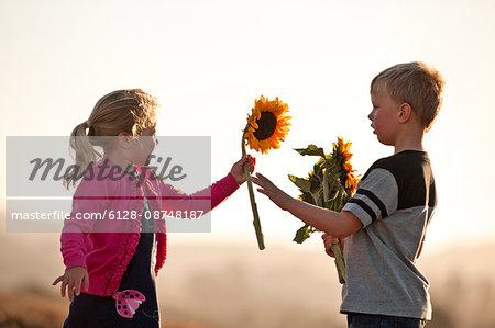Little boy giving sunflower to little girl.