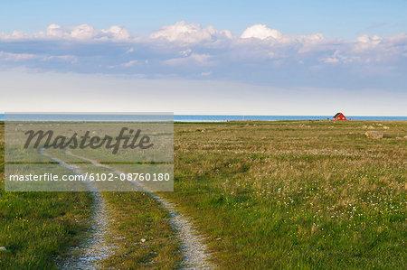 Dirt road leading through meadows