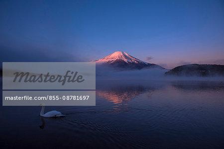 Lake Yamanaka and Mt. Fuji, illuminated red by sunlight, Yamanakako-mura, Yamanashi Prefecture, Japan