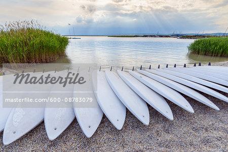 Surfboards on Beach, Neusiedl, Lake Neusiedl, Burgenland, Austria