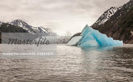 Grewingk Glacier, Lake Trail, Kachemak Bay, Alaska, USA