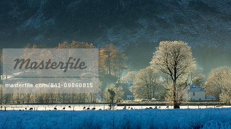 Hoar frost over Stonethwaite village in Borrowdale, Lake District National Park, Cumbria, England, United Kingdom, Europe
