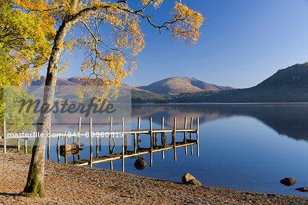 Autumn sunshine over Brandlehow, Borrowdale, The Lake District National Park, Cumbria, England, United Kingdom, Europe