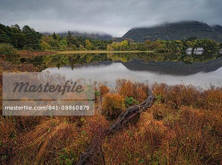 Muckross Lake, Killatney National Park, County Kerry, Munster, Republic of Ireland, Europe