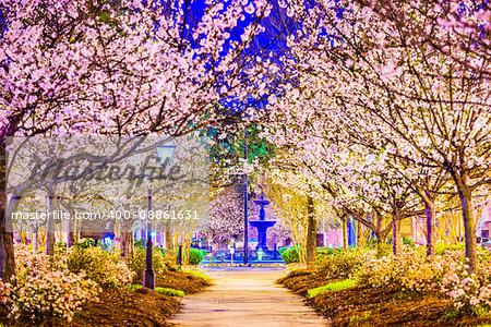 Macon, Georgia, USA in the spring.