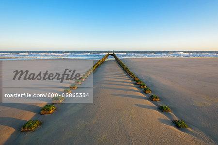 Wooden Breakwater on Sandy Beach at Low Tide, Domburg, North Sea, Zeeland, Netherlands