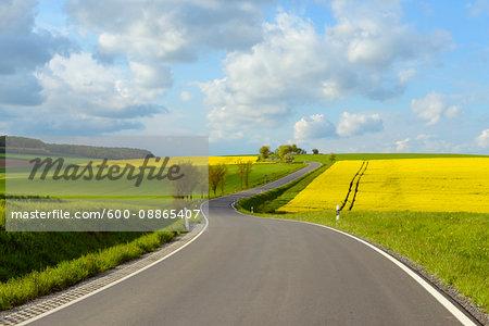Road in Countryside in Spring, Birkenfeld, Franconia, Bavaria, Germany