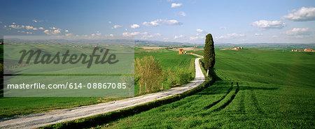 Crete senesi valley in spring